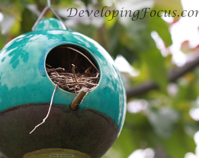 Blue Ceramic Round Birdhouse Photography, Bird House Garden Art Photography, Instant Download Bird House Photography Card or Print
