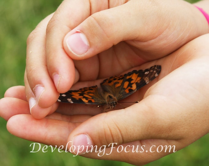 Child Hands Holding Orange Butterfly Nature Photography Print, Butterfly Nature Photography, Instant Download Card or Print