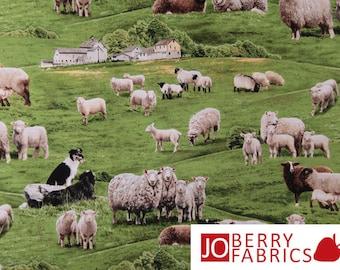 Farm Animals by Elizabeth's Studio, Sheep in Grassy Green Pasture.