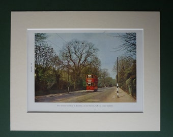 1945 Vintage Print Of A London Trolley Bus Passing A Rookery - Nature Print - Eric Hosking - Tram - Red Double Decker Bus - Red Bus - Nest