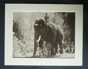 1930s Antique Elephant Boy Print, British Cinema Decor, Available Framed, Movie Art, Indian Gift, Film Picture Jungle Wall Art Sabu Dastagir