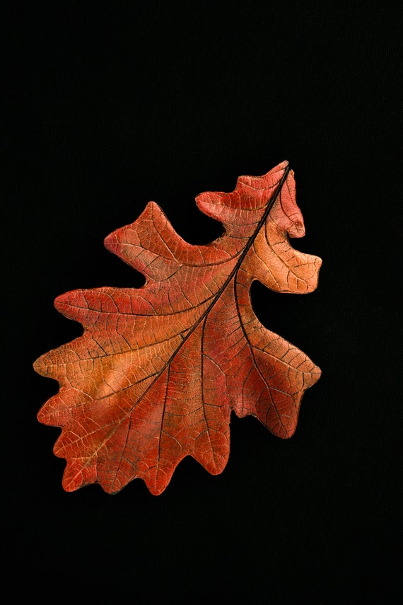 Redish Bronze, Medium Sized, Cast Oak Leaf