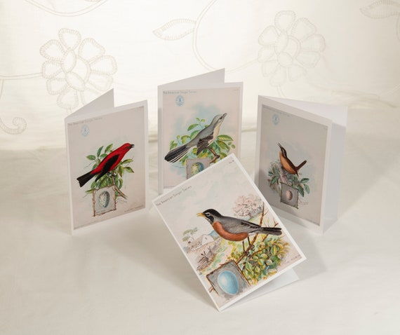 "8 Vintage Birds (A)  5""x7"" Blank Note Cards with Envelopes"