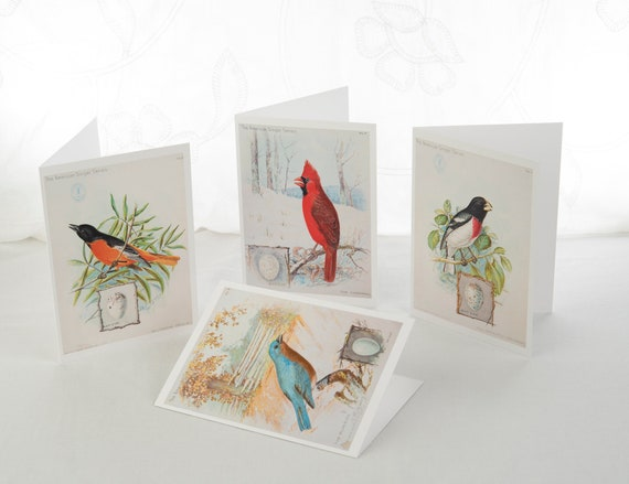 "8 Vintage Birds (B)  5""x7"" Blank Note Cards with Envelopes"