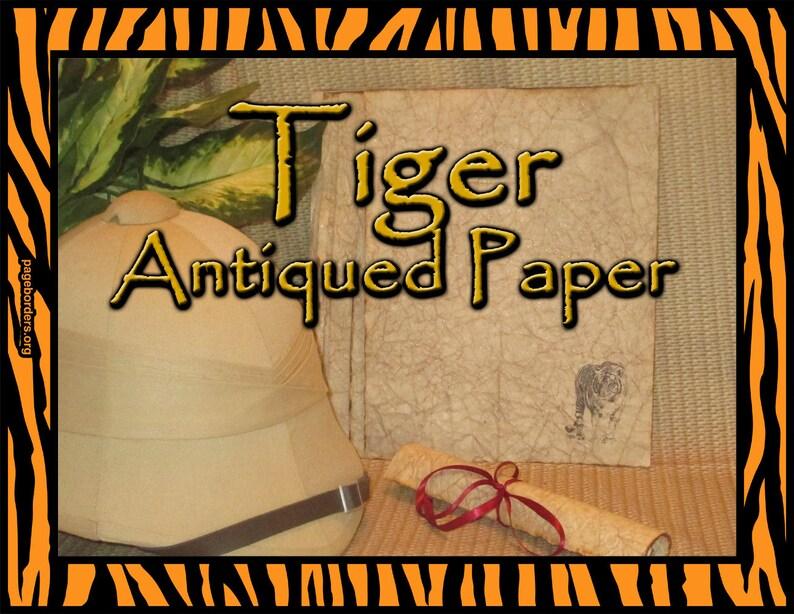 Tiger Antiqued Paper  10 Sheets image 0