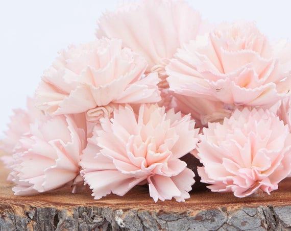 Blush Pink Carnation Sola Flowers - SET OF 10 , Sola Flowers, Blush Wood Sola Flowers,  Carnation Sola, Balsa Wood Flower, Craft Flowers