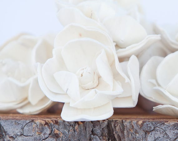Sola Magnolia Flowers- Sold in Sets of 10, 50 & 100