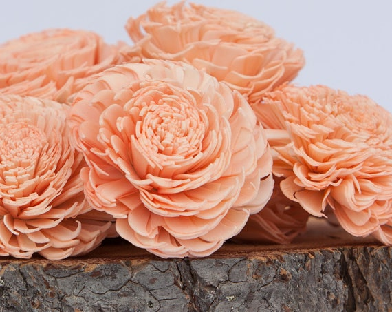 Peach Large Chorki Sola Flowers - Set of 10