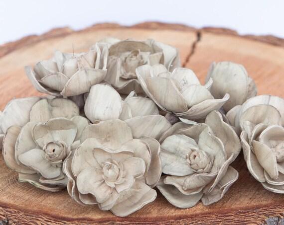 Tan Sola Magnolia Flowers- SET OF 10