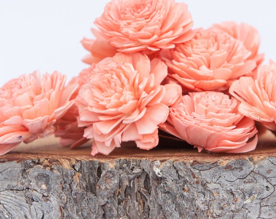 Coral Belly Sola Flowers - SET OF 10 , Sola Flowers, Wood Sola Flowers, Belli Sola, Balsa Wood Flowers, Sola Flowers, craft flower, DIY