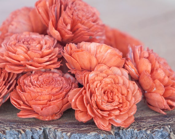 Orange Belly Sola Flowers - SET OF 10