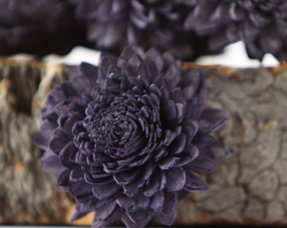 Navy Blue Zinnia Sola Flowers - SET OF 10