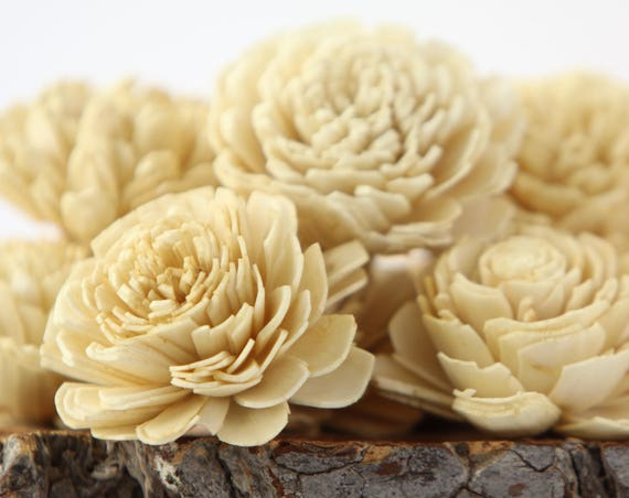 Champagne Belly Sola Flowers - SET OF 10 , Sola Flowers, Wood Sola Flowers, Belli Sola, Balsa Wood Flowers, Sola Flowers, Bali Sola Flowers