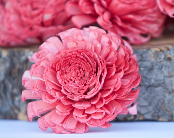 Watermelon Large Chorki Sola Flowers - Set of 10, Pinkish Coral Sola Flowers, Chorki Sola Flowers, Wood Sola Flower, Craft Flowers