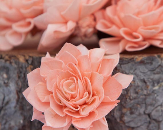 Peach Dahlia Sola Flowers - Set of 10, Folded Sola FLowers, Sola Flowers, Sola Flower, Wood Sola Flowers, Balsa Wood FLowers, Craft Flowers