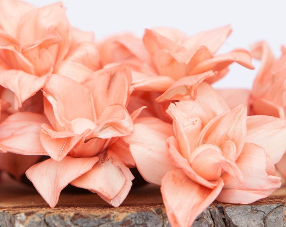 Coral Star Magnolia Sola Flowers - SET OF 10 , Sola Flowers, Coral Sola Wood Flowers, Magnolia Sola, Balsa Wood, craft flowers, DIY flowers