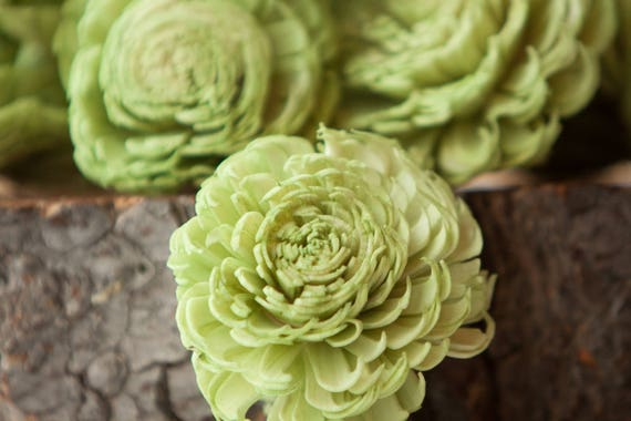 Green Large Chorki Sola Flowers - Set of 10, Sola Flowers, Green Chorki Sola Flowers, Wood Sola Flower, Flowers for Crafting, DIY Wedding