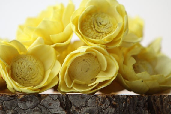 Lemon Yellow Camellia Sola Flowers- SET OF 10