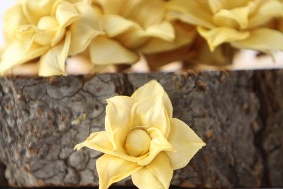 Mustard Yellow Star Magnolia Sola Flowers - SET OF 10
