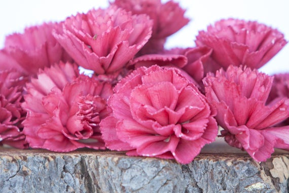 Red Carnation Sola Flowers - SET OF 10 , Sola Flowers, Wood Sola Flowers, Carnation Sola, Balsa Wood Flowers, Wedding DIY, Craft Flowers