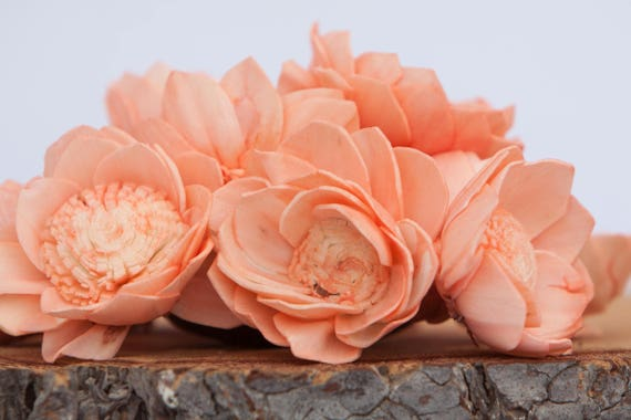 Peach Camellia Sola Flowers- SET OF 10 , Peach Sola Flowers,  Wood Sola Flowers, Camelia Sola, Wedding DIY, Crafting Flowers, Craft