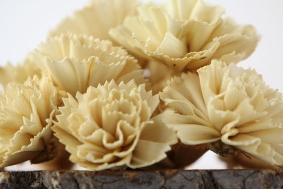 Champagne Carnation Sola Flowers - SET OF 10 , Sola Flowers, Wood Sola Flowers, Carnation Sola, Balsa Wood Flowers, Champagne Craft Flowers