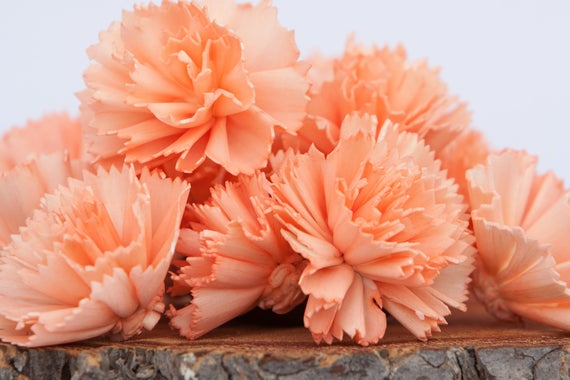 Peach Carnation Sola Flowers - SET OF 10 , Sola Flowers, Peach Wood Sola Flowers,  Carnation Sola, Balsa Wood Flower, Craft Flowers