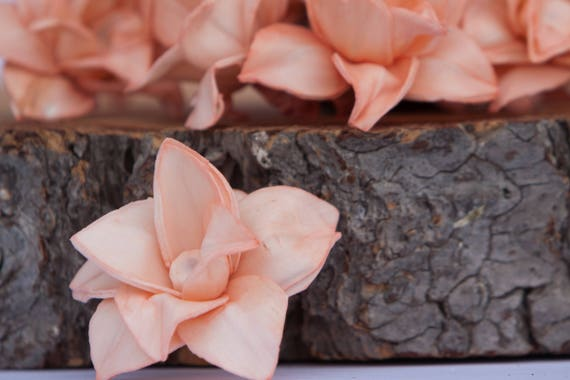 Peach Star Magnolia Sola Flowers - SET OF 10 , Peach Sola Wood Craft Flowers