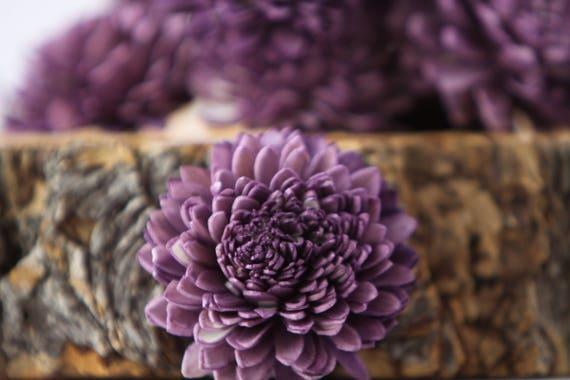Purple Zinnia Sola Flowers - SET OF 10