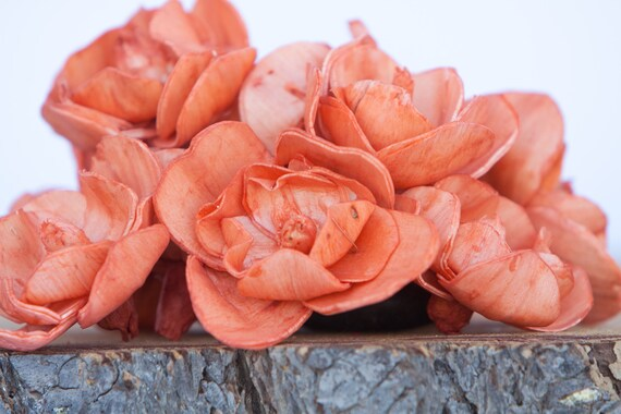 Orange Sola Magnolia Flowers- SET OF 10