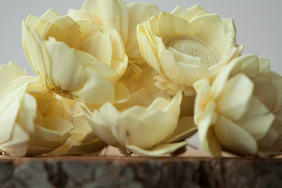 Pale Yellow Camellia Sola Flowers- SET OF 10 , Buttercream Sola Flowers, Light Yellow Wood Sola Flowers, Camelia Sola, Wedding DIY