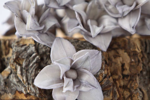 Grey Star Magnolia Sola Flowers - SET OF 10 , Sola Flowers, Gray Wood Sola Flowers, Magnolia Sola, Balsa Wood, Grey craft flowers