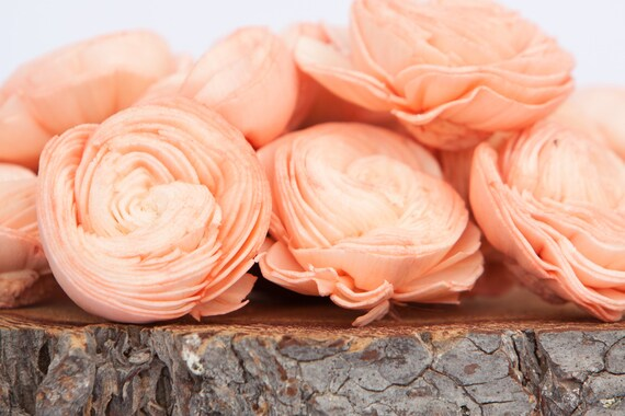 Peach Sola Shell Flowers - SET OF 10