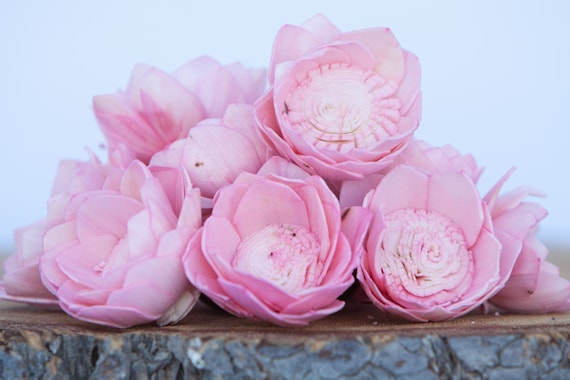 Pink Camellia Sola Flowers- SET OF 10 , Pink Sola Flowers,  Wood Sola Flowers, Camelia Sola, Wedding DIY, Crafting Flowers, Craft flowers