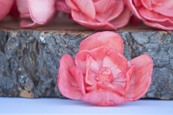 Available in sets of 45 and 100 Pink Watermelon Sola Flower Mix