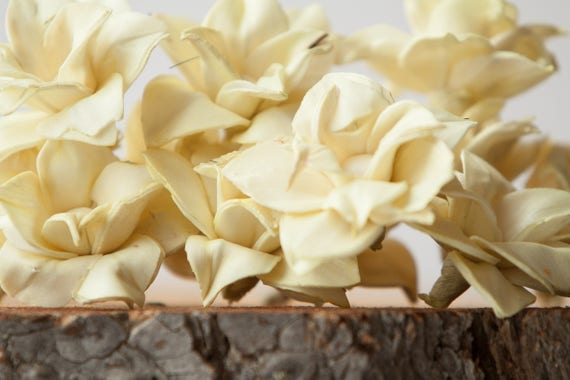 Pale Yellow Star Magnolia Sola Flowers - SET OF 10 , Buttercream Sola Flowers, Light Yellow Wood Sola Flowers, Magnolia Sola, Balsa Wood