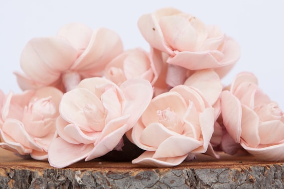 Blush Pink Sola Magnolia Flowers- SET OF 10 , Blush Sola Flowers,  Blush Wood Sola Flowers, Magnolia Sola, Balsa Wood Flowers, Blush Flowers