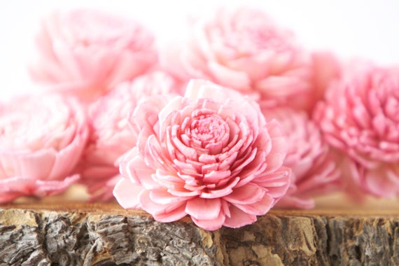 Pink Belly Sola Flowers - SET OF 10 , Pink Sola Flowers, Wood Sola Flowers, Belli Sola, Balsa Wood Flowers, Sola Flowers, craft flower, DIY