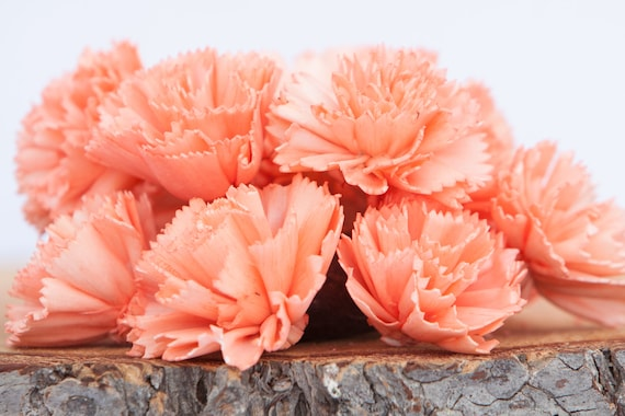 Coral Carnation Sola Flowers - SET OF 10 , Sola Flowers, Wood Sola Flowers, Carnation Sola, Balsa Wood Flowers, Craft Flowers