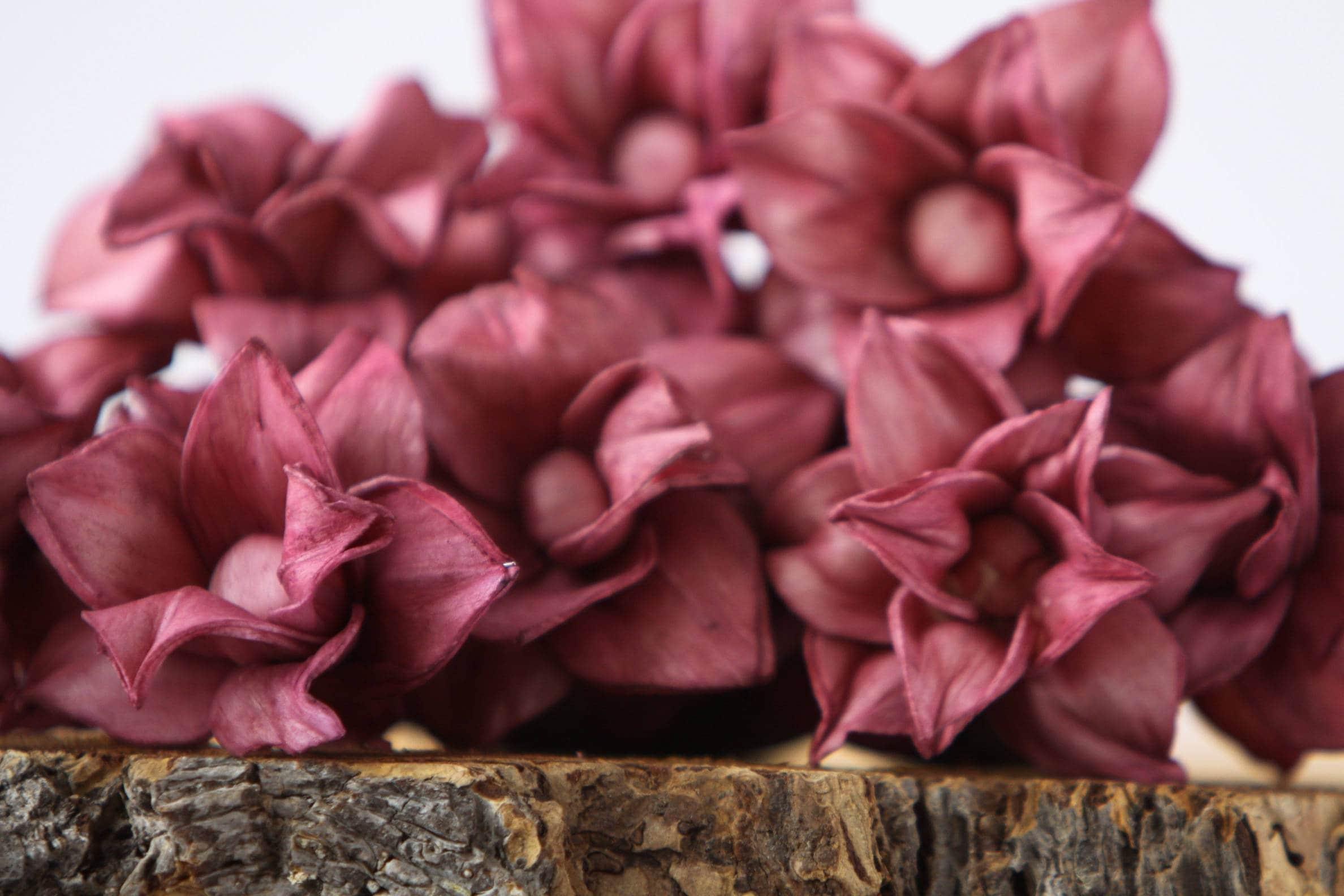 Aubergine Star Magnolia Sola Flowers - SET OF 10 , Sola Flowers ...