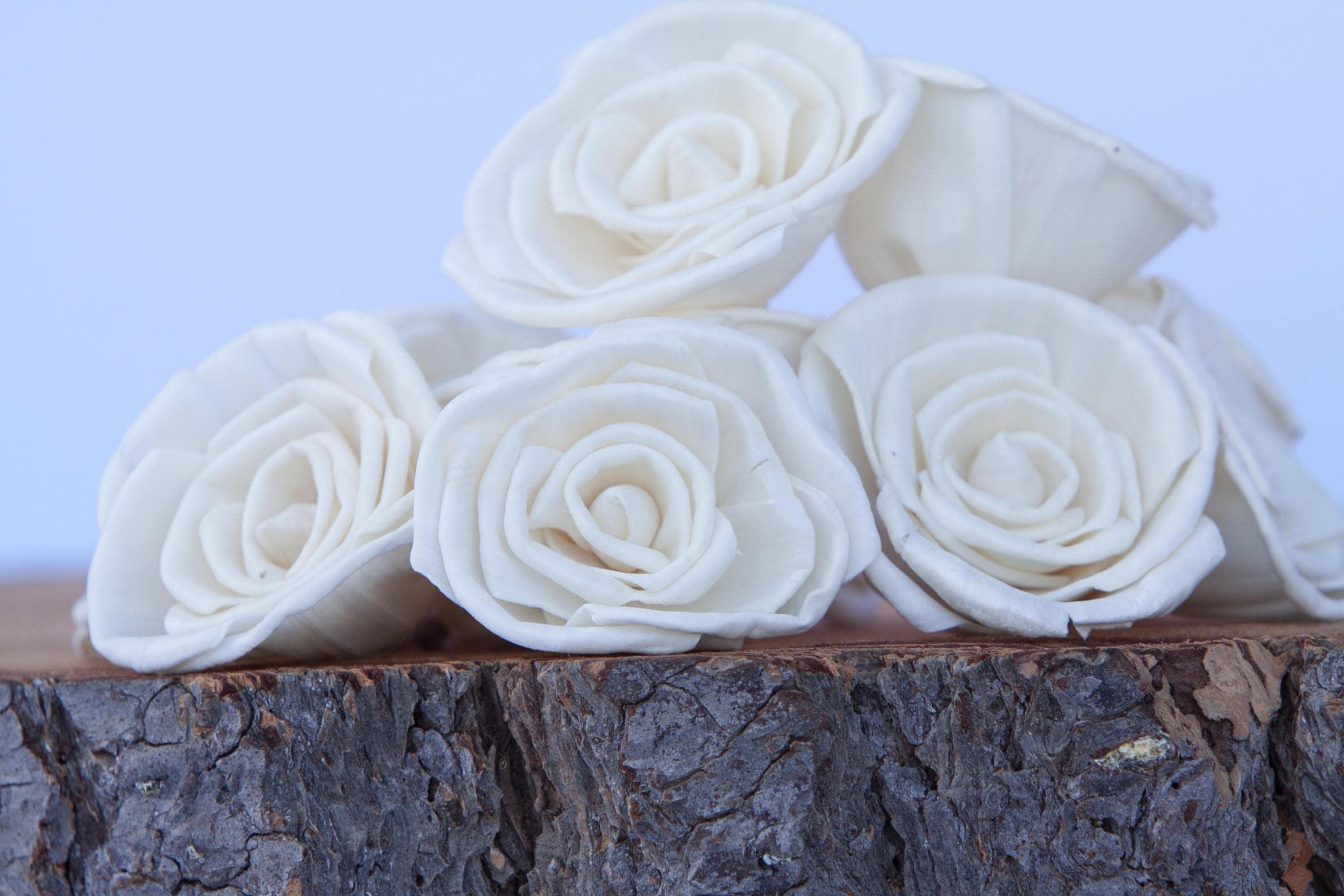 Classic Rose Sola Flowers - SET OF 10 , Sola Flowers, Wood Sola ...