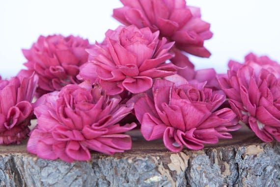 Red Dahlia Sola FLowrs - Set of 10, Folded Sola FLowers, Sola Flowers, Sola Flower, Wood Sola Flowers, Balsa Wood FLowers, Craft Flowers