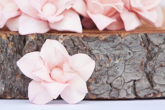 Blush Pink Star Magnolia Sola Flowers - SET OF 10 , Sola Flowers, Blush Wood Sola Flowers, Magnolia Sola, Balsa Wood, Blush craft flowers