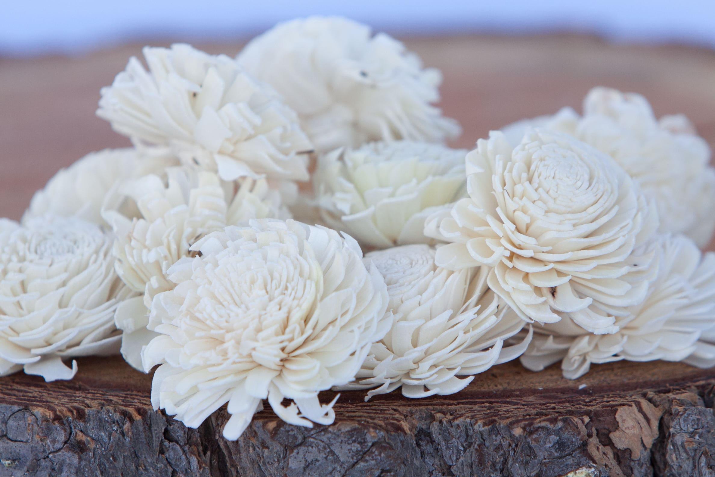 Chorki sola flowers set of 10 chorki sola wood sola flowers chorki sola flowers set of 10 chorki sola wood sola flowers chorki sola balsa wood flowers wedding diy flowers for crafting izmirmasajfo