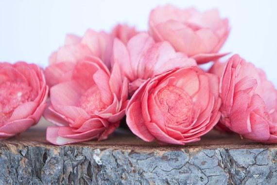 Watermelon Camellia Sola Flowers- SET OF 10