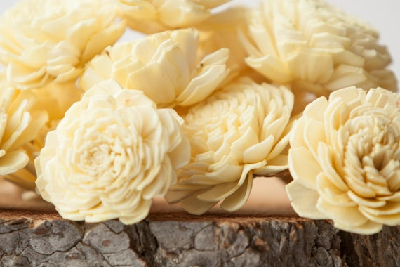 Pale Yellow Belly Sola Flowers - SET OF 10 , Sola Flowers, Wood Sola Flowers, Belly Sola, Balsa Wood Flowers, Buttercream Sola Flowers