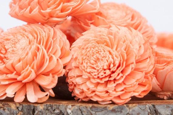 Coral Large Chorki Sola Flowers - Set of 10, Sola Flowers, Chorki Sola Flowers, Sola Flower, Wood Sola Flowers, Keepsake flowers,Wedding DIY