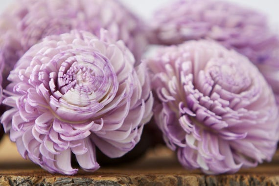 Lavender Large Chorki Sola Flowers - Set of 10, Sola Flowers, Purple Chorki Sola Flowers, Sola Flower, Wood Sola Flowers, Keepsake flowers