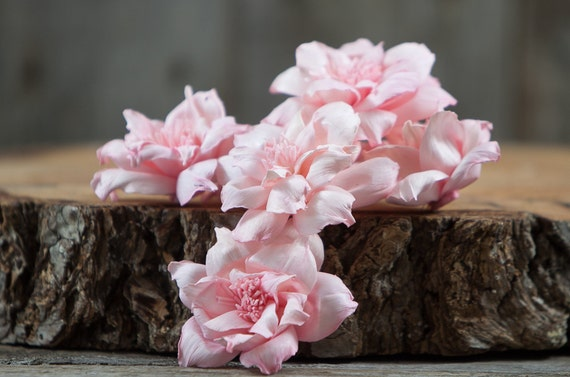 Blush Pink Old Garden Rose Sola Flowers - Set of 5 , Sola Flowers, Wood Sola Flowers, Balsa Wood Flowers, Craft Flowers, sola wood flowers
