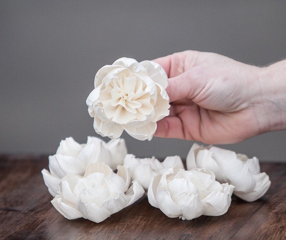 Premium Carnation Sola Flowers - Set of 5 , Sola Flowers, Wood Sola Flowers, Balsa Wood Flowers, Craft Flowers, sola wood flowers